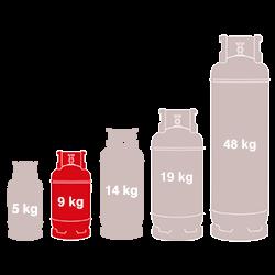 9kg Gas